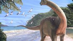الكشف في مصر عن ديناصورات أفريقية