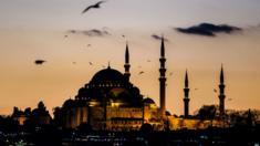 صورة لمسجد السليمانية احد المزارات السياحية في مدينة اسطنبول التركية.