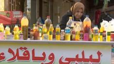 شيماء قاسم اضطرت أضطرت للعمل كبائعة للحمص والبقلاء على عربة في أحدى شوارع بغداد