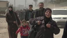 أعلن الصليب الاحمر الدولي دخول خمس وعشرين شاحنة تحمل ما مجموعه 340 طنا من المواد الغذائية إلى منطقة دوما في الغوطة الشرقية. وقد دخلت هذه الشاحنات، عبر معبر الوافدين شرقي دمشق.