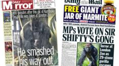 Daily Mirror and Daily Mail