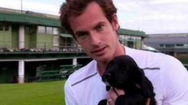 Andy Murray with a puppy