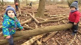 Kids playing in woodland