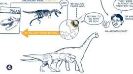How did dinosaurs die?