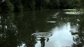 Stone skimming