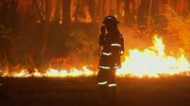 Firefighter with bushfires in the background