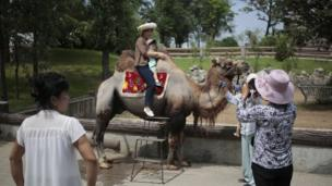 A North Korean and her son pose for a photo on the back of a camel at the newly opened Central Zoo in Pyongyang, North Korea, Tuesday, Aug. 23, 2016.