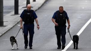 استخدمت الشرطة كلاب الشم المدربة في مسعى للعثور على أدلة تفيد التحقيقات.