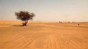 44 corps de migrants découverts dans le désert nigérien. Selon les 6 survivants, ils tentaient de se rendre en Libye.