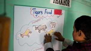 Children in Bhutan learning about wild tigers