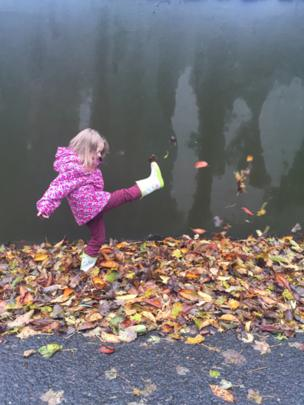 Lucy kicking leaves