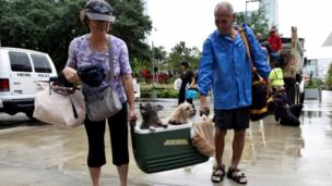 Couple wey carry box with two dog inside