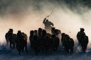 A horseman cracks a whip in Inner Mongolia