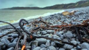 Cold Knap beach in Barry