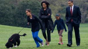 One of the first things the Obama girls did when they moved into the White House was get a dog. President Obama said in his victory speech that he had promised to buy them a puppy, so they bought Bo, a Portuguese water dog.
