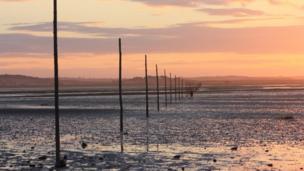 Una figura solitaria en la Isla Sagrada de Lindisfarne
