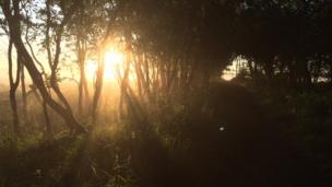 Sunrise over Baillie Moss
