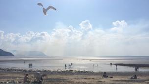 A seagull swooping at Llandudno beach