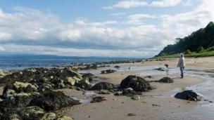 Rosemarkie beach
