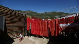 مرز آمریکا و مکزیک