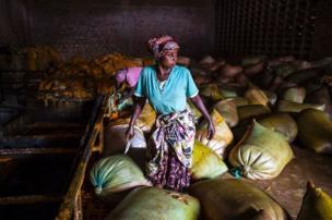 คนงานที่โรงงานผลิตสบู่ในเมืองบูเตมโบ ประเทศคองโก