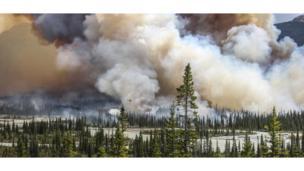Лесной пожар в Альберте, Канадa