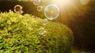 Sunshine and bubbles in Abingdon