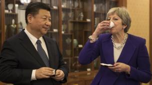 习和梅品茶