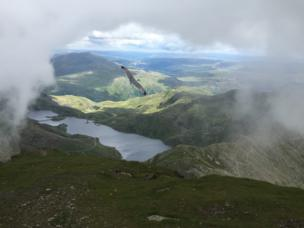 The clouds cleared on the summit of Snowdon to reveal a seagull on the wing and countryside below
