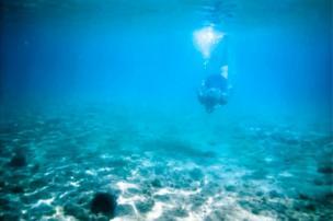 An underwater diver.