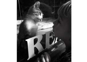 A small boy looks at a kitten through a window