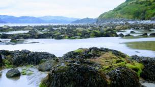 Low tide at Llwyngwril, Gwynedd