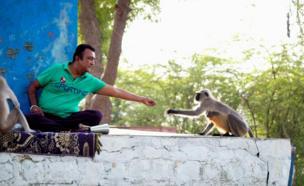 A man feeds a monkey
