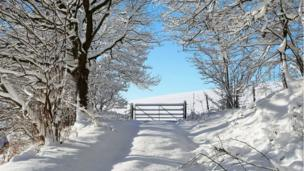 A snow-covered lane