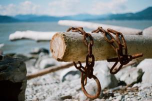 A rusty chain around wood