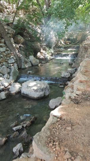 تارا از کرند غرب در استان کرمانشاه