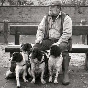 Man with spaniels