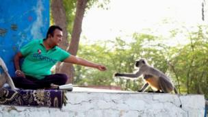 إنسان وقرد
