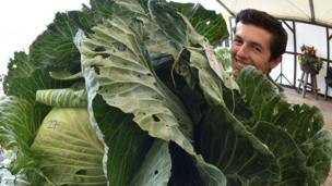 Man holding giant cabbage