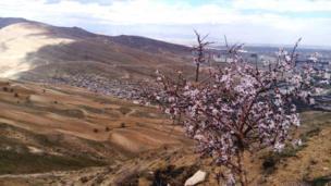 جمشید از ارومیه مرکز استان آذربایجان غربی