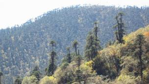 不丹的农村地区