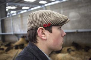سوق الماشية