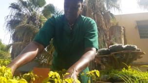 Coumba Diop cultive des légumes bio à Dakar (Sénégal) et apprend à certains de ses clients les méthodes de jardinage.