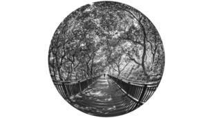 圖輯,中國,攝影,藝術,魚眼,台灣,文化