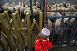 பலியிடுவதற்குத் தயாராக உள்ள மரியாடுகளை பார்வையிடுகிறார், இந்தப் 'பெரிய மனிதர்'. இடம்: பெய்ஜிங், சீனா.