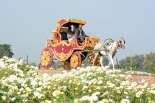 फूलों के बाग़ीचे में एक घोड़ागाड़ी