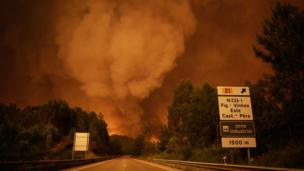 Дым поднимается над деревьями в Педрогао-Гранде, 17 июня 2017