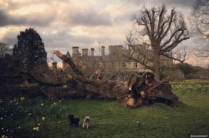 Beaulieu Palace House after Storm Katie hit. Credit: @Beaulieumorley on Instagram