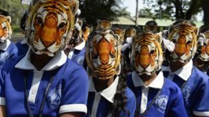 बाघ का मुखौटा