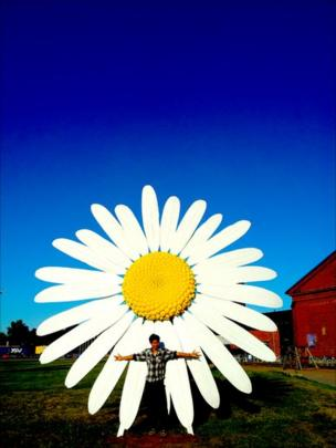A man standing in front of a giant daisy